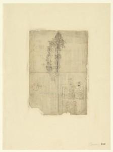 Leonardo da Vinci (1452-1519), Codice Atlantico (Codex Atlanticus), foglio 663 recto. Composizione floreale; discorso sull'utilità degli occhiali.